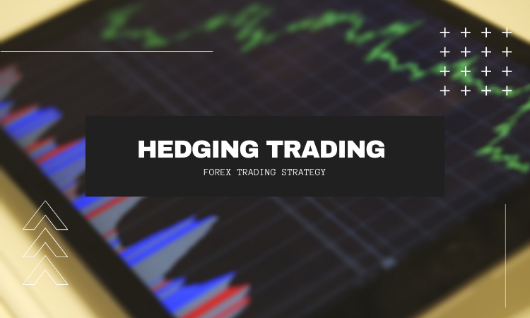 Hedging Trading strategy - Learn Forex Trading